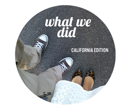 What we did template